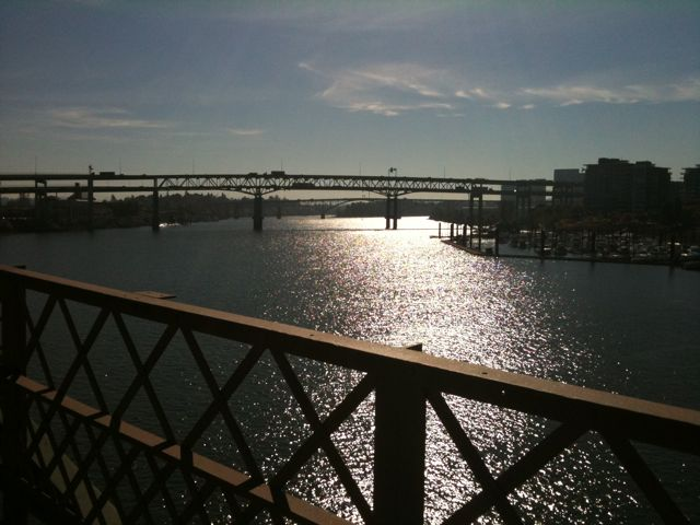 Portland Bridges